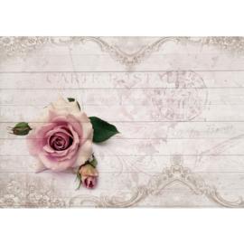 Fotobehang poster 1663 bloemen roos roze