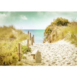 Fotobehang poster 4584 duinen strand