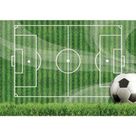 Fotobehang poster 3141 sport voetbal grasveld veld