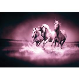 Fotobehang poster 1017 dieren eenhoorn paarden unicorn paars