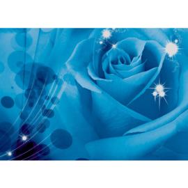 Fotobehang poster 1304 bloemen roos rozen blauw