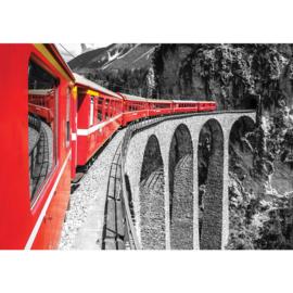 Fotobehang poster 1811 trein brug grijs rood landschap