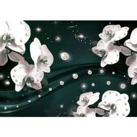 Fotobehang poster 0682 orchidee wit diamant groen