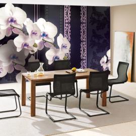 Fotobehang poster 1824 bloemen planten orchidee roze paars