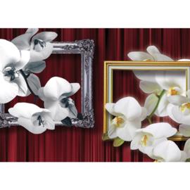 Fotobehang poster 1216 bloemen orchidee schilderijlijsten