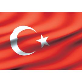 Fotobehang 2310 Turkije vlag