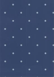 67105-2 stippen blauw grijs