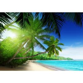 Fotobehang 0002 strand palmboom 400 x 280