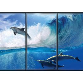 Fotobehang 2069 dieren dolfijn golf water