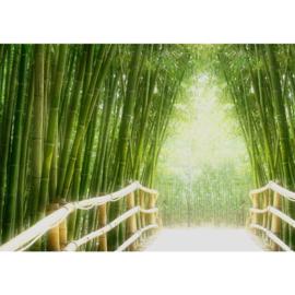 Fotobehang poster 0002 bamboo bamboe bos brug natuur