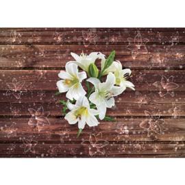 Fotobehang poster 2054 bruin planken hout bloemen wit