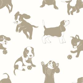 27198 honden puppy goud gebroken wit