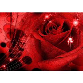 Fotobehang poster 0987 bloemen rozen roos rood