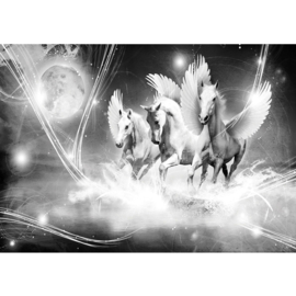 Fotobehang poster 1079 dieren pegasus paarden met vleugels grijs