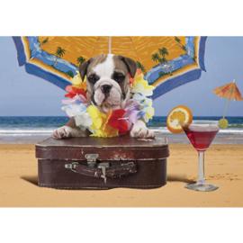 Fotobehang poster 3292 dieren hond puppy cocktail koffer strand