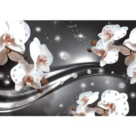 Fotobehang poster 0685 orchidee wit diamant grijs