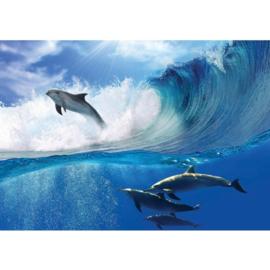 Fotobehang 531 dolfijn 400 x 280
