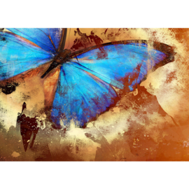 Fotobehang poster 3559 dieren vlinder insect blauw