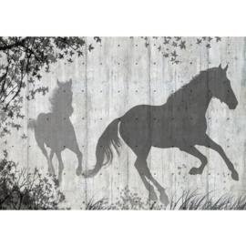 Fotobehang poster 0916 hout paarden grijs