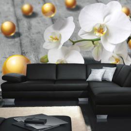 Fotobehang poster 0897 orchidee wit parels goud bloem plant