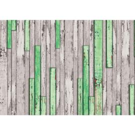 Fotobehang poster 1269 hout planken grijs groen