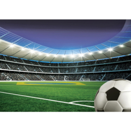 Fotobehang poster 2084 voetbal sport stadion brazilie