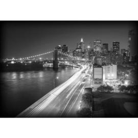 Fotobehang poster 0553 skyline usa new york grijs