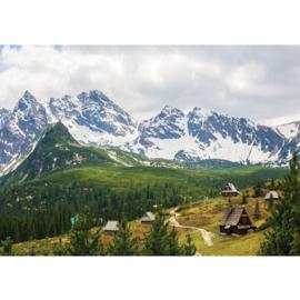 Fotobehang poster 3349 bergen landschap karpaten