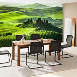 Fotobehang poster 0068 natuur uitzicht toscane groen landschap
