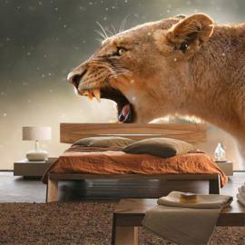 Fotobehang poster 1423 leeuw kop tijger roofdier safari