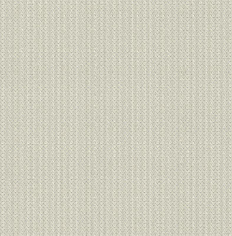 Walter WA2102 zilver parelmoer ( met gratis lijm )