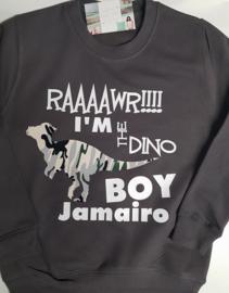 Dino boy sweater