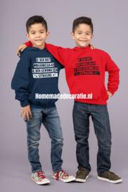 Hoodie  onhandelbaar jongens/meisjes