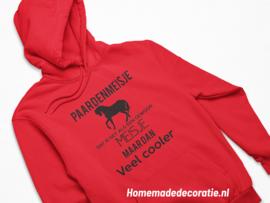 Paarden Meisje /jongen 2  Hoody
