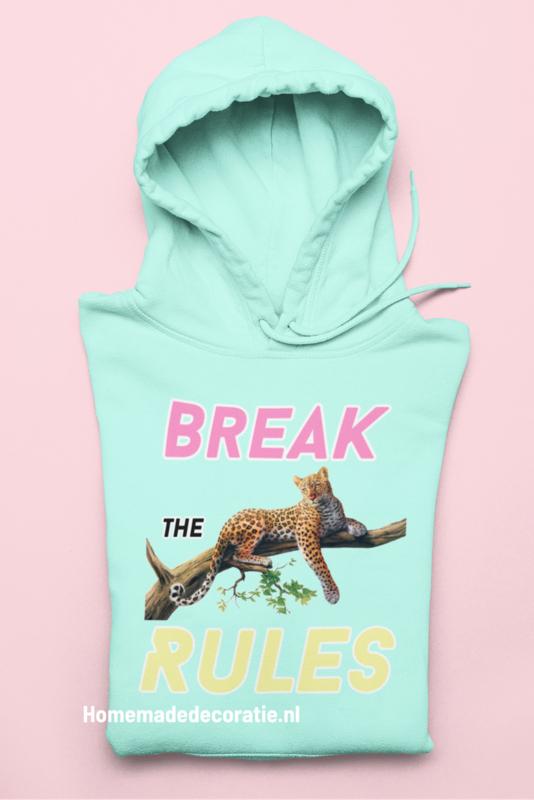 Break the rules hoodie