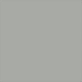 AMB 5 - Light Gray - color sample