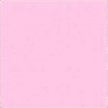 Michael Miller 140 - color sample Rose