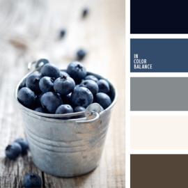 Color scheme 12