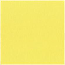 Michael Miller - 52 - Canary - zacht geel