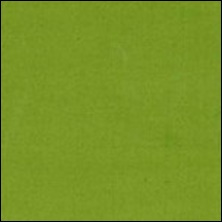 Michael Miller  148 - color sample Asparagus