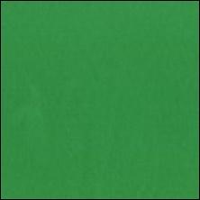 Michael Miller  60 - color sample Turf