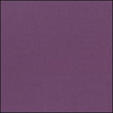 Michael Miller 75 - color sample Venus
