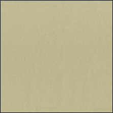 Michael Miller 46 - color sample Khaki