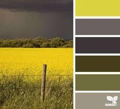 Kleurpalet 162