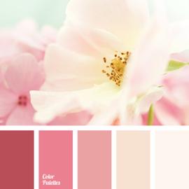 Kleurpalet 151