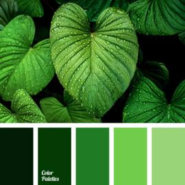 Kleurpalet 59