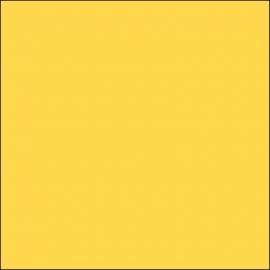 AMB 10 - Dark Yellow