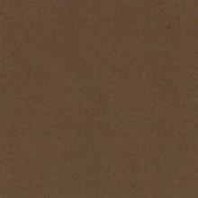 Michael Miller 259 - color sample Truffle