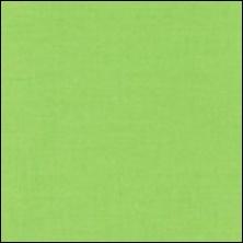 Michael Miller  109 - kleurstaal Fern