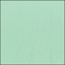 Michael Miller  48 - color sample Mint